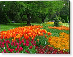 Springtime At Longwood Gardens Acrylic Print by Dan Myers