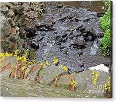 Acrylic Print featuring the photograph Springtime Creek by Christina Verdgeline