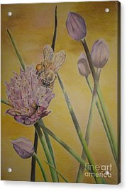 Acrylic Print featuring the drawing Springtime Glow by Laurianna Taylor