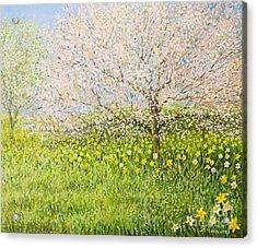 Springtime Impression Acrylic Print by Kiril Stanchev