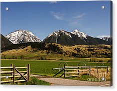 Acrylic Print featuring the photograph Springtime In Montana by Sue Smith