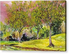 Springtime In Sawgrass Park Acrylic Print by Gary Debroekert