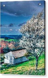 Springtime In The Blue Ridge Mountains II Acrylic Print by Dan Carmichael