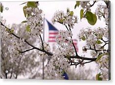 Springtime In The South Acrylic Print