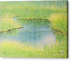Springtime Marsh-new Beginnings Acrylic Print