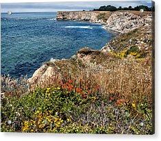 Springtime On The California Coast Acrylic Print