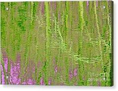 Springtime Reflections Acrylic Print by Cindy Lee Longhini