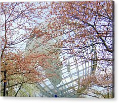 Springtime Round The World Acrylic Print by Ed Weidman