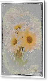 Sprinkled Daisies Acrylic Print by Susan  Lipschutz
