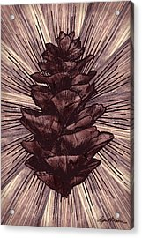 Spruce I Acrylic Print