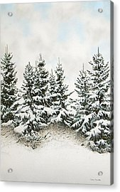 Spruce-trees In Winter Acrylic Print by Conrad Mieschke