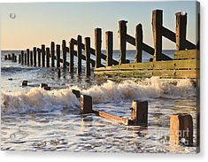 Spurn Point Sea Defence Posts Acrylic Print by Colin and Linda McKie
