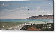 Acrylic Print featuring the painting Squadron Of Pelicans Central Califonia by Ian Donley