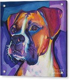 Square Boxer Portrait Acrylic Print