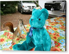 Squirrel And Bear Acrylic Print