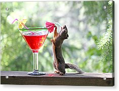Squirrel At Cocktail Hour Acrylic Print