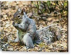 Squirrel In Central Park Acrylic Print by George Atsametakis