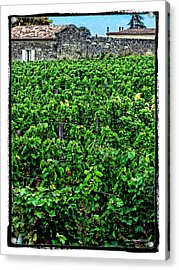 Acrylic Print featuring the photograph St. Emilion Winery by Joan  Minchak
