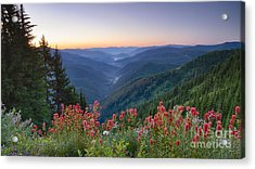 St. Joe Wildflowers Acrylic Print