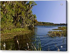 St Johns River Florida Acrylic Print by Christine Till