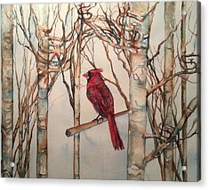 Acrylic Print featuring the painting St Louis Cardinal Redbird by Christy  Freeman