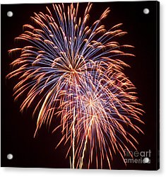 St Louis Fireworks Acrylic Print by Philip Pound