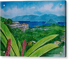 St. Thomas Virgin Islands Acrylic Print by Frank Hunter