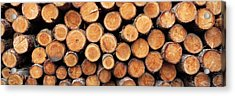 Stack Of Logs In Forest, Burrator Acrylic Print