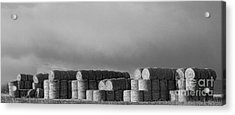 Stacked Round Hay Bales Bw Panorama Acrylic Print by James BO  Insogna