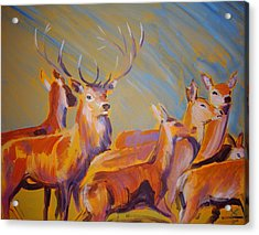 Stag And Deer Painting Acrylic Print