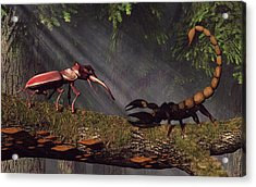 Stag Beetle Versus Scorpion Acrylic Print by Daniel Eskridge
