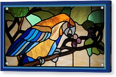 Stained Glass Parrot Window Acrylic Print by Thomas Woolworth