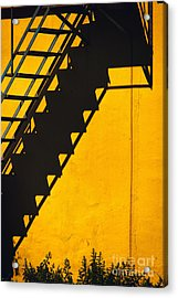 Acrylic Print featuring the photograph Staircase Shadow by Silvia Ganora