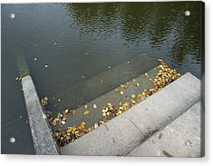 Stairs Leading Into Water Acrylic Print by Matthias Hauser