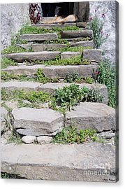 Acrylic Print featuring the photograph Stairs by Ramona Matei