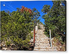 Stairs To Mount Baldy  Acrylic Print