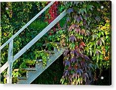 Stairs2 Acrylic Print