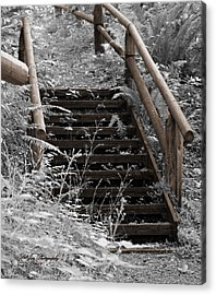 Acrylic Print featuring the photograph Stairway Home by Jeanette C Landstrom
