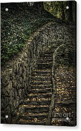 Stairway In The Park Acrylic Print