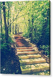 Stairway Into The Forest Acrylic Print