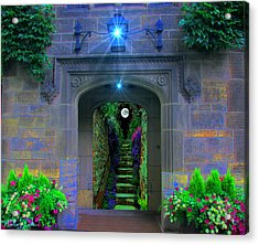 Stairway To Paradise  Acrylic Print by Michael Rucker