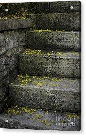 Stairway To Spring Acrylic Print