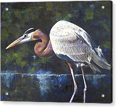 Acrylic Print featuring the painting Stalking by Pam Talley