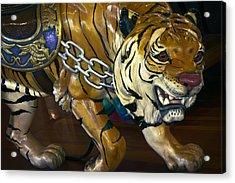 Stalking Tiger Of Looff Carousel  1909 Acrylic Print