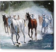 Stampede Acrylic Print
