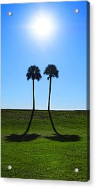 Stand By Me - Palm Tree Art By Sharon Cummings Acrylic Print by Sharon Cummings