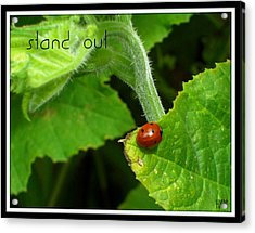 Acrylic Print featuring the photograph Stand Out by Heidi Manly