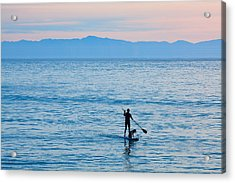 Stand Up Paddle Surfing In Santa Barbara Bay California Acrylic Print by Ram Vasudev
