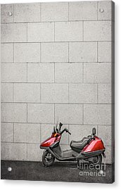 Stand Your Ground  Acrylic Print