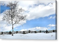 Standing Alone Acrylic Print by Todd Hostetter